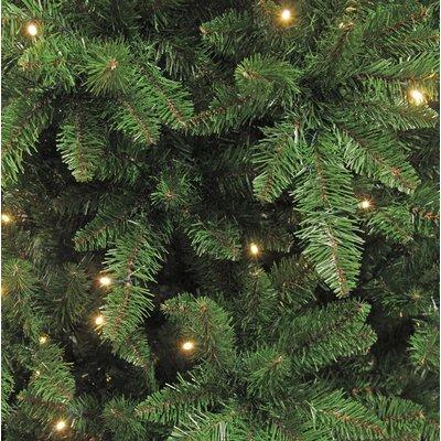Benton LED - Grün - Triumph Tree künstlicher Weihnachtsbaum