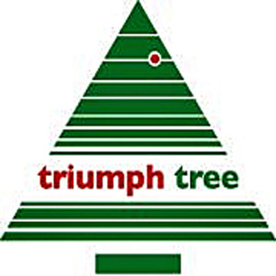 Camden - Wit - Triumph Tree kunstkerstboom