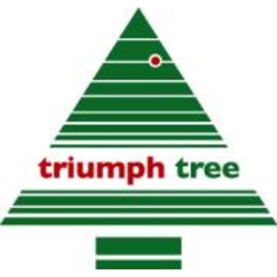 Forest Frosted Pine Slim (schmal) - Grün - Triumph Tree künstlicher Weihnachtsbaum