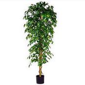 Kunstplant Ficus Benjamina Groen - H 210cm - Kunststof pot - Mica Decorations