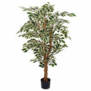 Kunstplant Ficus Hawaii Groen-bont - H 150cm - Kunststof pot - Mica Decorations