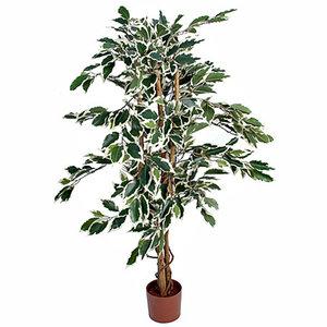 Künstliche Pflanze Ficus Hawaii Grün-bunt - H 110cm - Plastiktopf - Mica Decorations