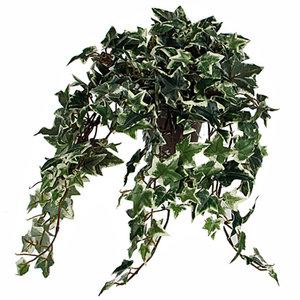 Künstliche Pflanze Efeu Grün-bunt - L 45cm - Keramiktopf - Mica Decorations