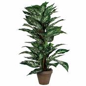 Kunstplant Dieffenbachia Groen - H 65cm - Keramiek sierpot - Mica Decorations