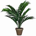 Kunstplant Palm Areca Groen - H 45cm - Keramiek sierpot - Mica Decorations