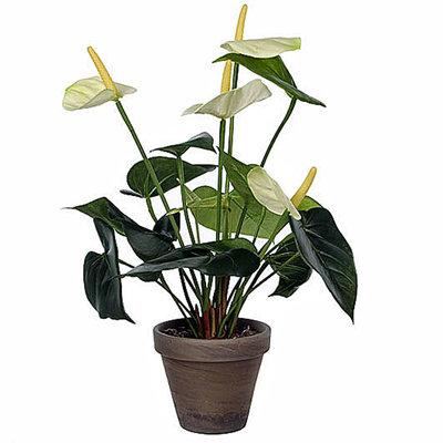 Kunstplant Anthurium Wit - H 40cm - Keramiek sierpot - Mica Decorations