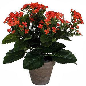 Kunstplant Kalanchoë Oranje - H 31cm - Keramiek sierpot - Mica Decorations