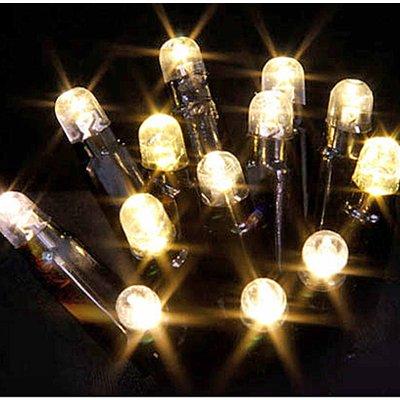 LUCA Connect 24V - Lichtsnoer met 49 warm witte LED-lampjes