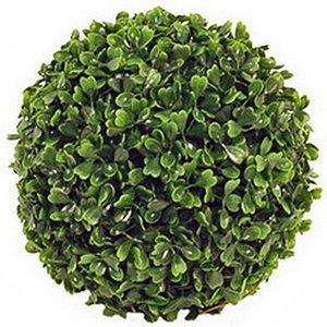 Kunstplant Buxus bol Groen - D 36cm - UV resistant - Voor buiten en binnen - Mica Decorations