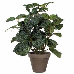 Kunstplant Pilea Groen - H 35cm - Keramiek sierpot - Mica Decorations