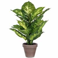 Kunstplant Dieffenbachia Groen - H 40cm - Keramiek sierpot - Mica Decorations