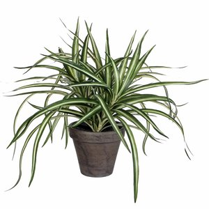 Kunstplant Palm Areca - H 45cm.  In Kunststof Pot.