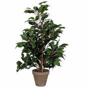 Kunstplant Ficus Exotica Groen - H 65cm - Keramiek sierpot - Mica Decorations