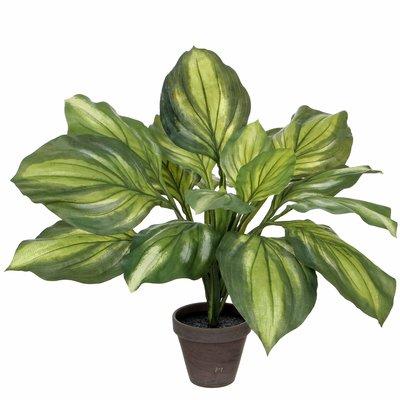 Künstliche Pflanze Hosta Grün - H 50cm - Keramiktopf - Mica Decorations