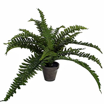 Künstliche Pflanze Farn Boston Grün - H 35cm - Keramiktopf - Mica Decorations