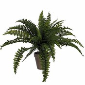 Künstliche Pflanze Farn Boston Grün - H 45cm - Keramiktopf - Mica Decorations