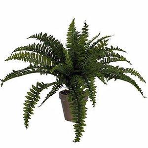 Mica Decorations - Kunstplant Varen Boston groen - H 45cm - Keramiek stenen sierpot grijs-antraciet