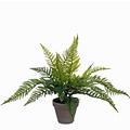 Kunstplant Varen Groen - H 40cm - Keramiek sierpot - Mica Decorations