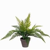 Künstliche Pflanze Farn Grün - H 40cm - Keramiktopf - Mica Decorations