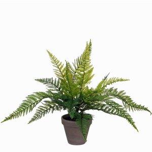 Mica Decorations - Kunstplant Varen groen - H 40cm - Keramiek stenen sierpot grijs-antraciet