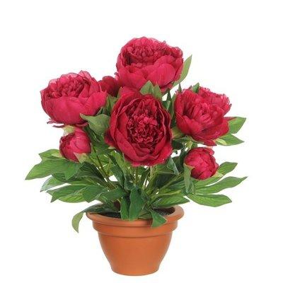 Kunstplant Pioenroos donker roze - H 50cm - Terracotta sierpot - Mica Decorations