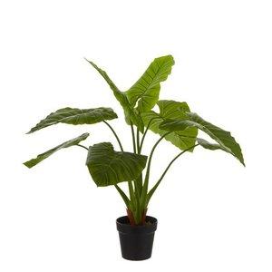 Mica Decorations - Kunstplant Taro Groen - H 100cm - kunststof pot