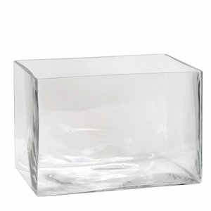 Handgemaakte glazen accubak Britt, transparant