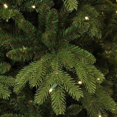 Brampton Spruce LED - Groen - BlackBox kunstkerstboom