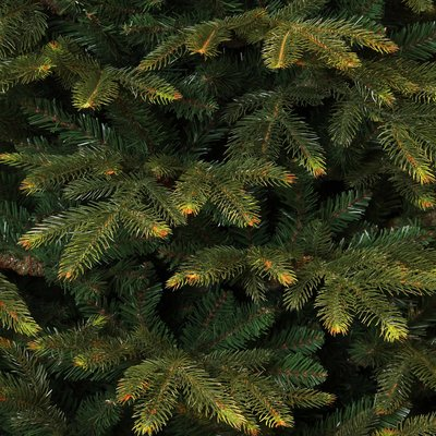 Frasier Fir - Grün - BlackBox künstlicher Weihnachtsbaum