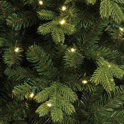 Milton Spruce LED - Groen - BlackBox kunstkerstboom