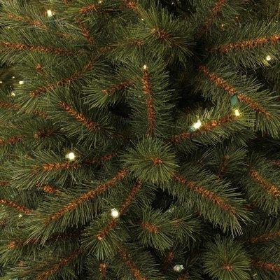 Kingston Pine Deluxe LED - Grün - BlackBox künstlicher Weihnachtsbaum