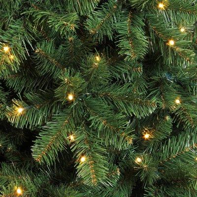 Pencil Pine LED - Groen - Triumph Tree kunstkerstboom