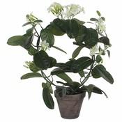 Kunstplant Bruidsbloem Wit - H 50cm - Keramiek sierpot - Mica Decorations