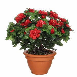 Künstliche Pflanze Azalee Rot - H 35cm - Terrakottatopf - Mica Decorations