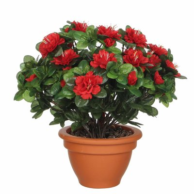 Kunstplant Azalea Rood - H 35cm - Terracotta sierpot - Mica Decorations