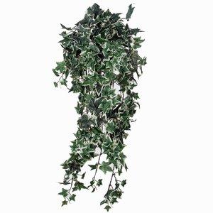 Kunstplant Hedera Bont - L 80cm - Losse steker