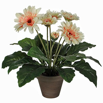 Kunstplant Gerbera Crème - H 35cm - Keramiek sierpot - Mica Decorations