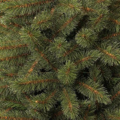 Toronto Fir - Grün - BlackBox künstlicher Weihnachtsbaum