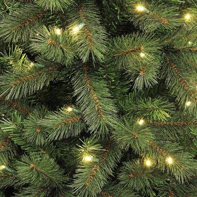 Medford LED - Groen - BlackBox kunstkerstboom