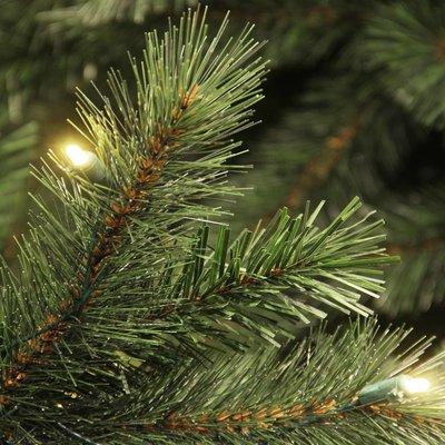 Medford LED - Grün - BlackBox künstlicher Weihnachtsbaum