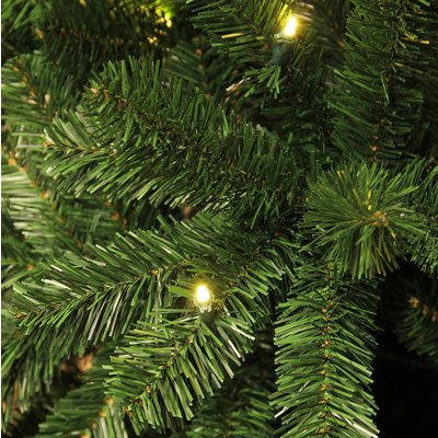 Charlton LED - Groen - BlackBox kunstkerstboom