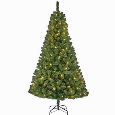 Charlton LED - Grün - BlackBox künstlicher Weihnachtsbaum