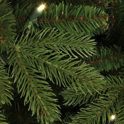 Brampton Spruce LED Slim (smal) - Groen - BlackBox kunstkerstboom