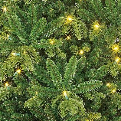 Brampton Spruce LED Slim (schmal) - Grün - BlackBox künstlicher Weihnachtsbaum