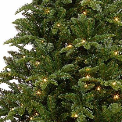 Bolton LED - Grün - Black Box künstlicher Weihnachtsbaum