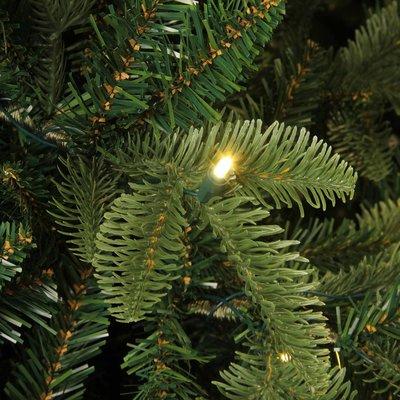 Bolton LED - Groen - BlackBox kunstkerstboom