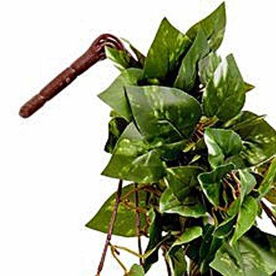 Kunstplant Hedera Groen-bont - Steker L 80cm - Mica Decorations