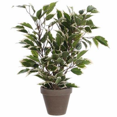Kunstplant Ficus Natasja Groen-bont - H 40cm - Keramiek sierpot - Mica Decorations