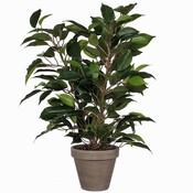 Kunstplant Ficus Natasja Groen - H 40cm - Keramiek sierpot - Mica Decorations