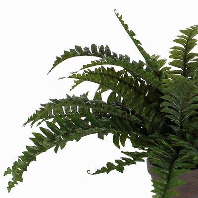 Kunstplant Varen Boston Groen - H 42cm - Keramiek sierpot - Mica Decorations